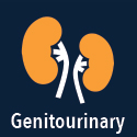 Genitourinary