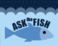 Ask the Fish